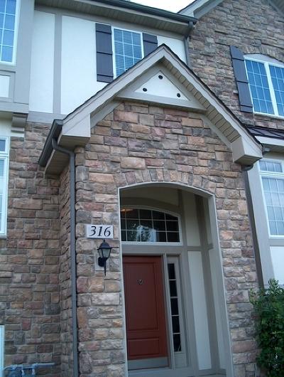Carol Stream Condo/Townhouse For Sale: 316 Castle Circle