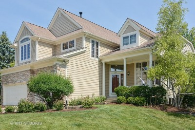Palatine Single Family Home For Sale: 1127 South Hidden Brook Trail
