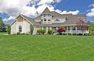 Plainfield Single Family Home For Sale: 13165 Denise Street