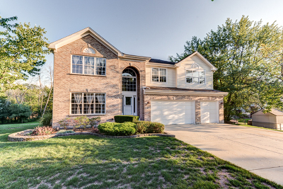 Downers Grove Single Family Home For Sale: 147 Lincoln Place