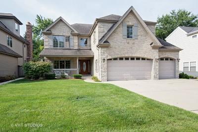 Elmhurst Single Family Home For Sale: 250 East Crescent Avenue