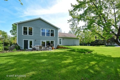 Lake Zurich Single Family Home For Sale: 101 Lorraine Drive