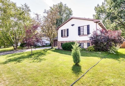Hanover Park Single Family Home Contingent: 4192 Woodlake Drive