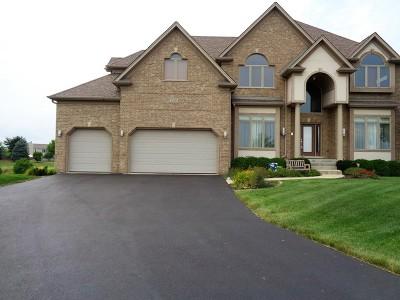 Plainfield Single Family Home For Sale: 15850 Brookshore Drive