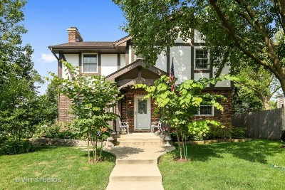 Downers Grove Single Family Home For Sale: 4140 Main Street