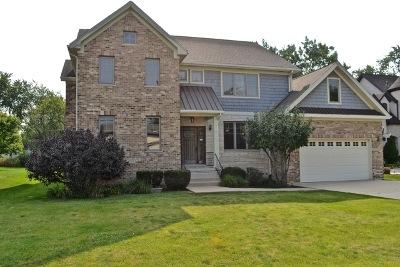 Burr Ridge Single Family Home For Sale: 8905 O Neill Drive