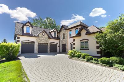 Bolingbrook Single Family Home Price Change: 10 Keller Court
