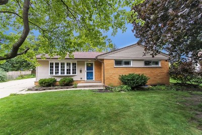 Elmhurst Single Family Home For Sale: 449 East Park Avenue