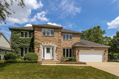 Lisle Single Family Home For Sale: 6097 Angel Lane