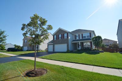 Elburn Single Family Home For Sale: 1127 Kendall Street