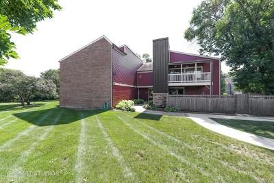 Wheaton Condo/Townhouse Contingent: 1479 South County Farm Road #1-4