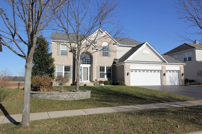 Carpentersville Single Family Home For Sale: 4078 Stratford Lane
