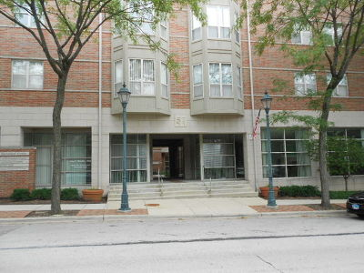 Roselle Condo/Townhouse Contingent: 57 East Hattendorf Avenue #309