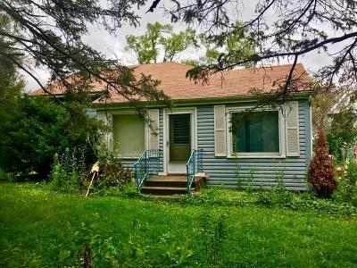 Naperville Single Family Home For Sale: 4s071 Rigi Road