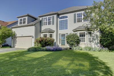 Plainfield Single Family Home Contingent: 25444 West Gateway Circle