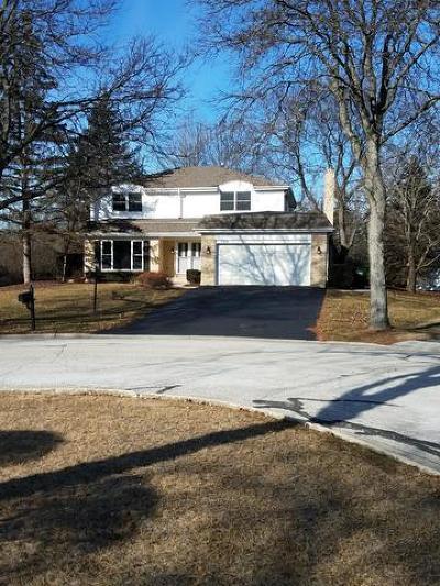 Palatine Single Family Home For Sale: 1336 West Hampton Place