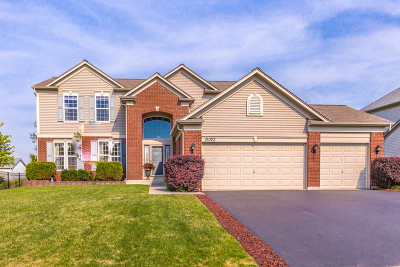 Lockport Single Family Home Contingent: 15022 Albright Drive