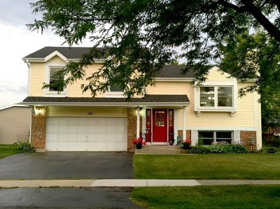 Lake Zurich Single Family Home Contingent: 175 West Harbor Drive