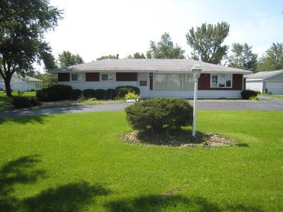 Crete Single Family Home For Sale: 853 West Elms Court Lane