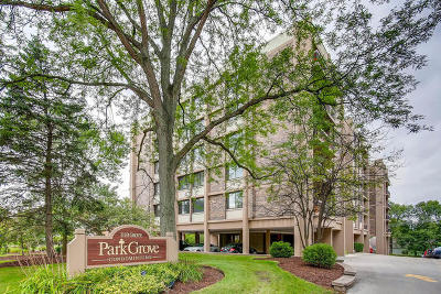 Downers Grove Condo/Townhouse For Sale: 1110 Grove Street #5E