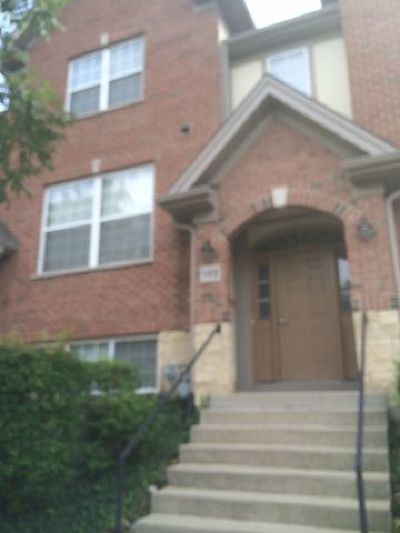 Mount Prospect Condo/Townhouse For Sale: 102 Creekbend Court #A
