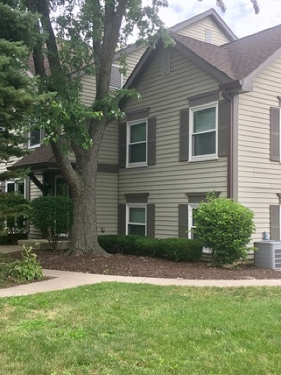 Lisle Condo/Townhouse For Sale: 2732 Weeping Willow Drive #B