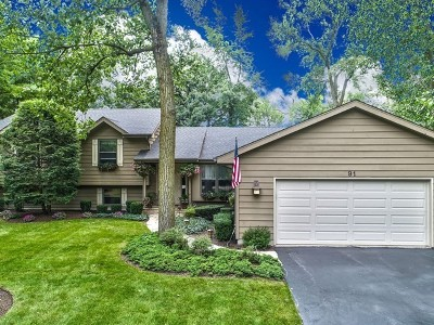 Lake Zurich Single Family Home For Sale: 91 Golfview Road