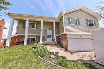 Woodridge Single Family Home For Sale: 1 Lorraine Avenue