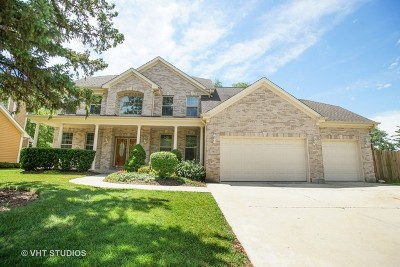 Palatine Single Family Home For Sale: 783 West Hill Road