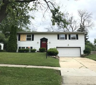 Lisle Single Family Home For Sale: 707 59th Street