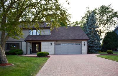 Oak Brook Single Family Home For Sale: 2s642 Avenue Chateaux