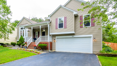 Bolingbrook Single Family Home Contingent: 315 Twin Creeks Court