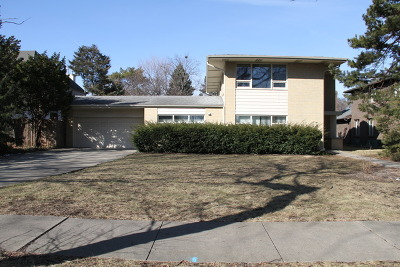 River Forest Single Family Home For Sale: 1310 William Street
