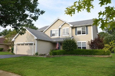 Naperville Single Family Home Contingent: 2763 Bluewater Circle