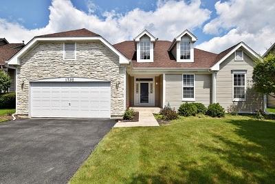 Aurora Single Family Home Contingent: 1732 Pinnacle Drive