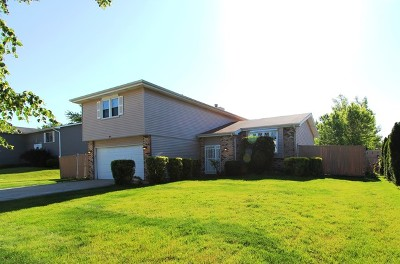 Matteson Single Family Home For Sale: 57 Timberlane Road