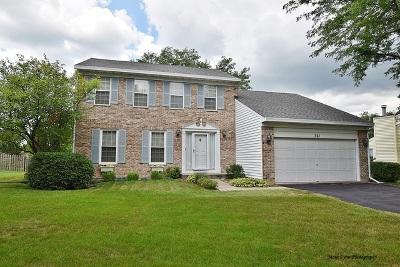 Batavia Single Family Home For Sale: 361 Aldrin Avenue