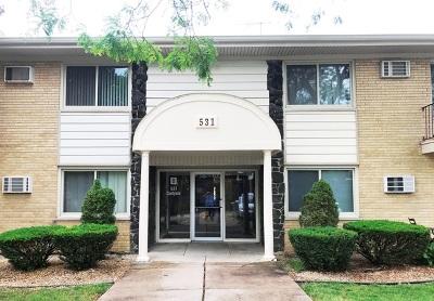 Clarendon Hills Condo/Townhouse For Sale: 531 Carlysle Drive #14