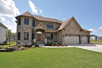 Naperville Single Family Home For Sale: 4224 Chinaberry Lane