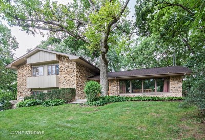 Joliet Single Family Home For Sale: 24509 West Guinevere Lane