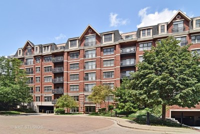 Wheaton Condo/Townhouse Contingent: 255 East Liberty Drive #705