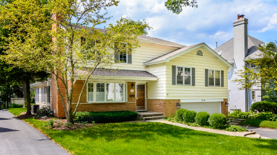 Hinsdale Single Family Home For Sale: 618 South Quincy Street