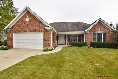 Batavia Single Family Home New: 28 North Daniels Drive