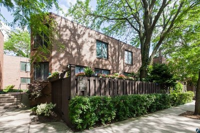 Cook County Condo/Townhouse Contingent: 1623 North Vine Street