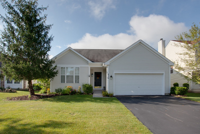 Round Lake Single Family Home New: 456 Havenwood Drive