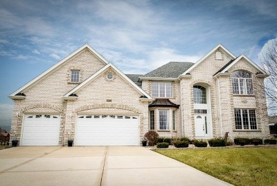 Lockport Single Family Home For Sale: 17218 South Comanche Court