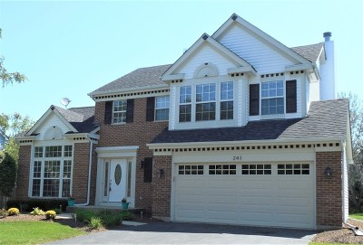 Bartlett Single Family Home For Sale: 241 Shawnee Circle