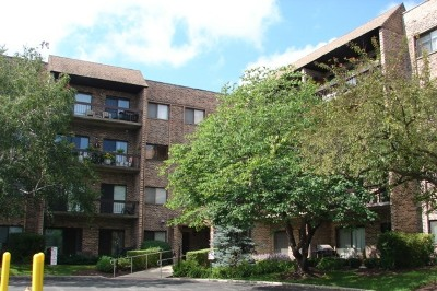 Mount Prospect IL Condo/Townhouse For Sale: $91,000