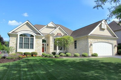 Elburn Single Family Home For Sale: 1477 Seaton Street