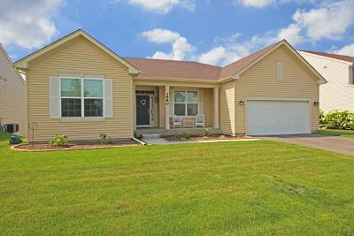 Woodstock Single Family Home For Sale: 2880 Haydn Street